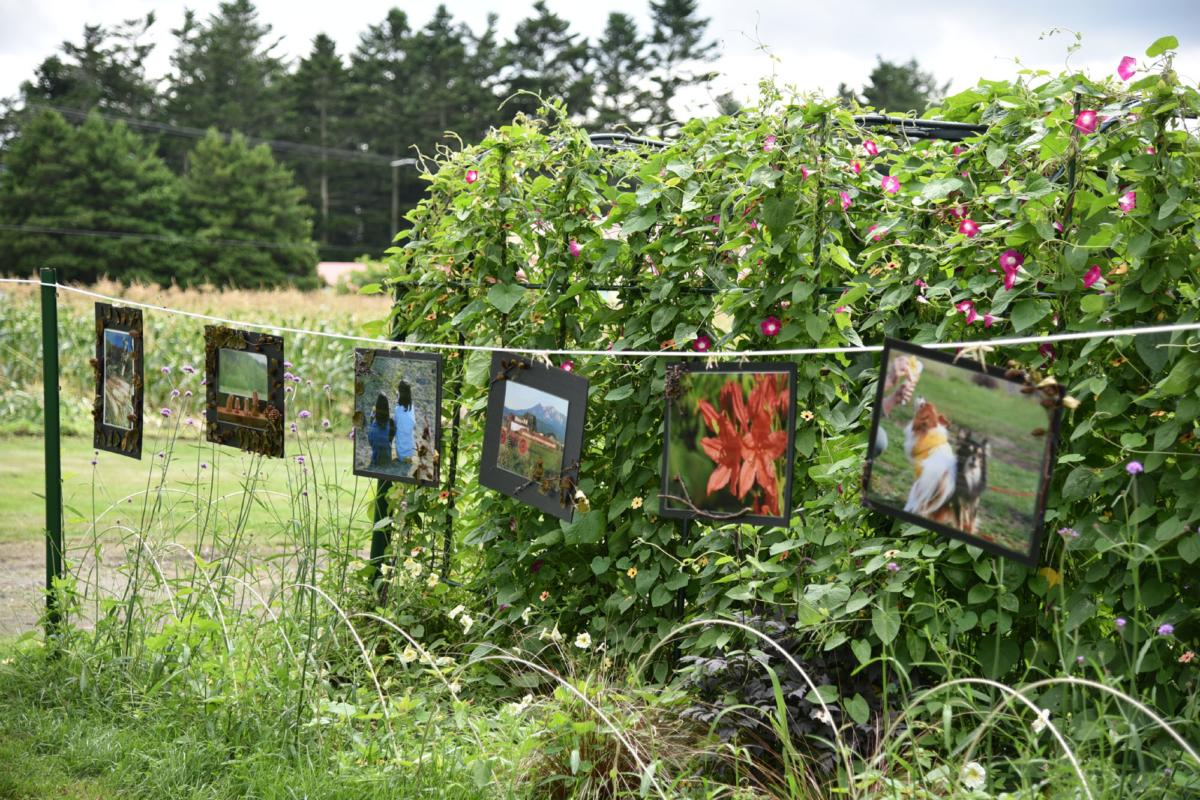 お庭で写真展