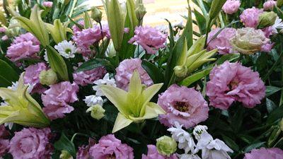 お花に囲まれて