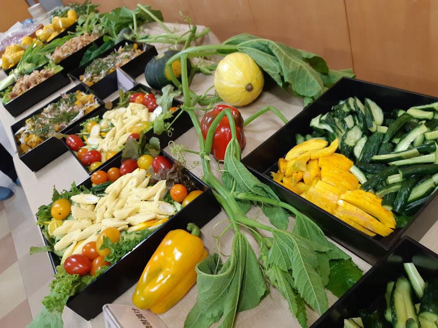 夏野菜は、美味しい彩
